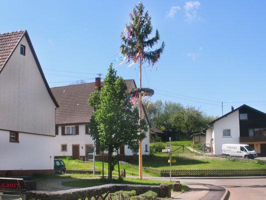 Maibaum in Tumlingens Ortsmitte von den Schaffigen Rentnern gestellt.