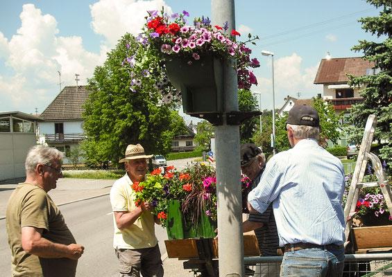 Jetzt schmucke Blumen-Ampeln für die Dorf-Durchfahrtstraße