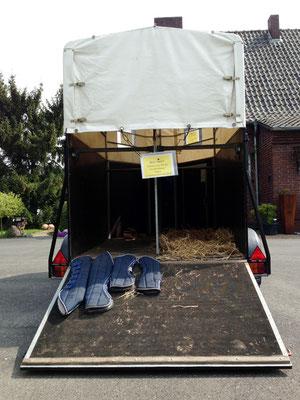 Wir halten Transportgamaschen für Ihr Pferd bereit