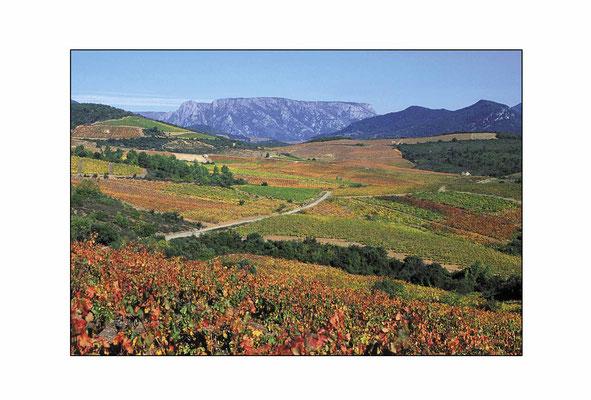 022 Vignoble et Caroux