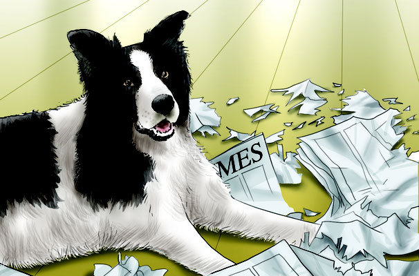 Illustration dog + newspaper