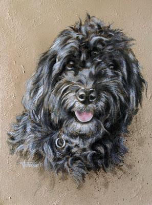 Hundeportrait - Hermine