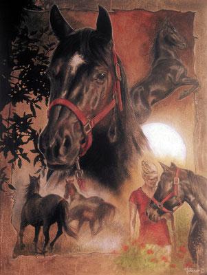 Pferdeportrait - Khaleesi aka Püppy - Quarterhorse