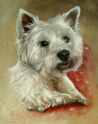 Hundeportrait - Charlie - West Highland Terrier - https://youtu.be/G5-IIy-BAMg