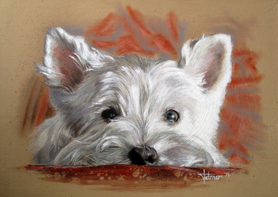 Hundeportrait West Highland Terrier 'Westie Bianca'