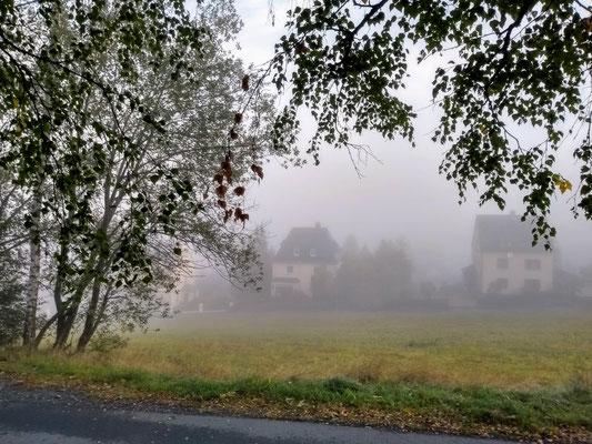 Am Waldweg 2019