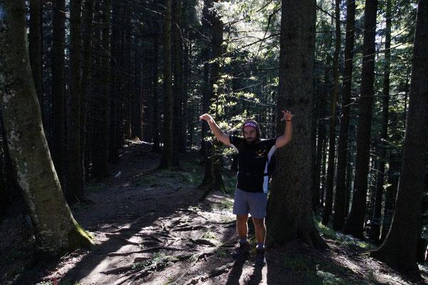 Ich liebe Wald-Monster :)