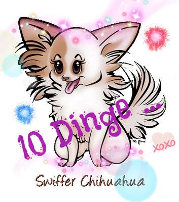 Chi-Love.de | BLOG | Magazin | 10 Dinge ... by Swiffer Chihuahua | 10 Dinge die ein Chihuahua Besitzer im neuen Jahr nicht hören möchte