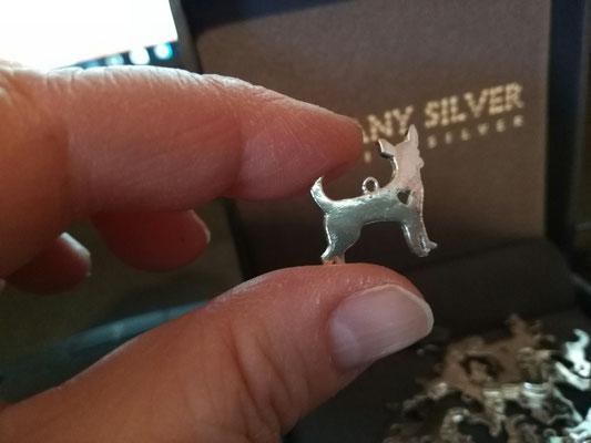 Chihuahua-Gewinnspiel-Facebook-Silber-Preis-Gewinn