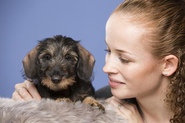 Tierfotografie, Hundeportrait, Hund und Mensch, Dackel, Fotostudio