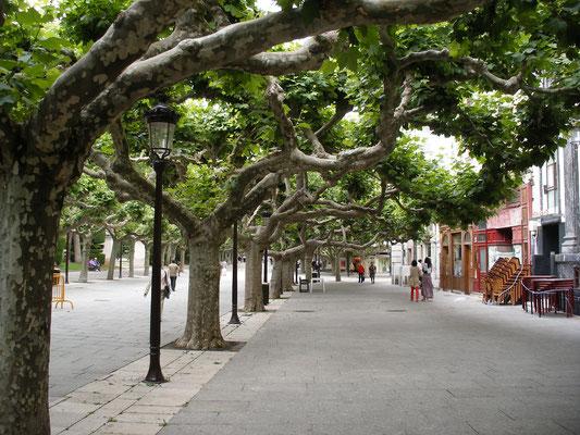 Une belle avenue