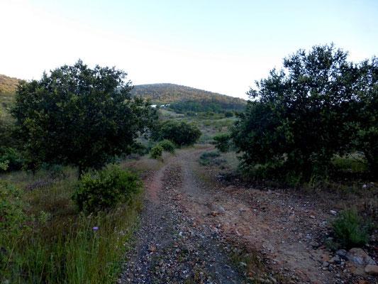 Le chemin suit la N 630