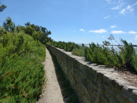 Le sentier longe la mer pour arriver sur Saint Vaast