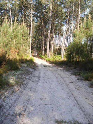 Chemin de sable