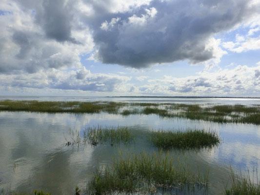 L e marais avec la grande marée