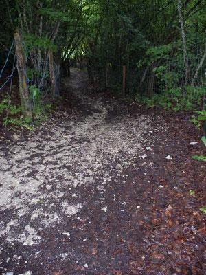 Le camino espagnol dans la boue