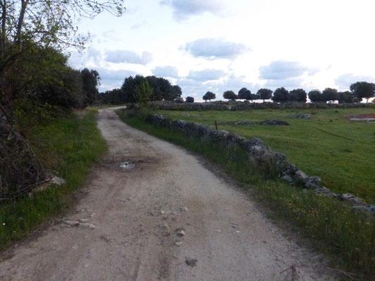 Chemin qui mène jusqu'au village de Valverde