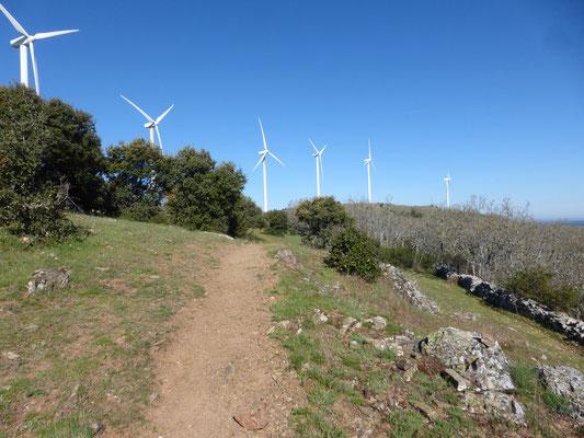 Pendant un temps avec les éoliennes
