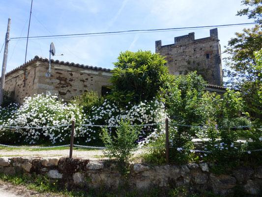 Castillo du 15eme