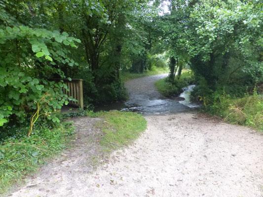 Petite rivière et son pont