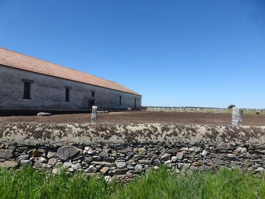 La ferme et ses élevages de porcs