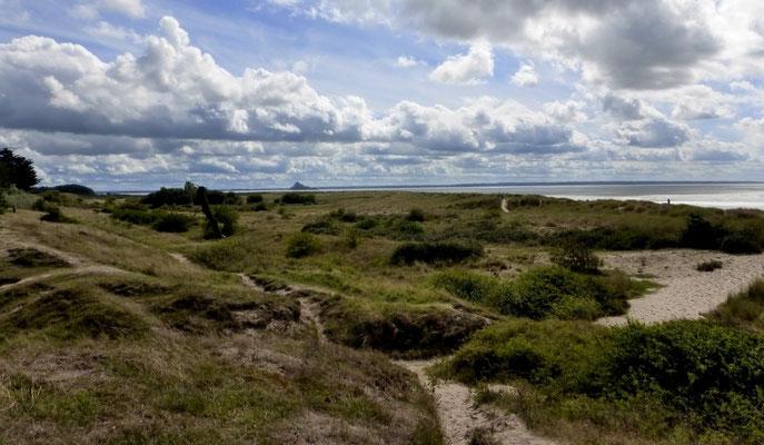 Les dunes de Genêts