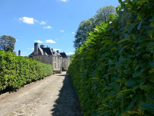 Le château de Courcy