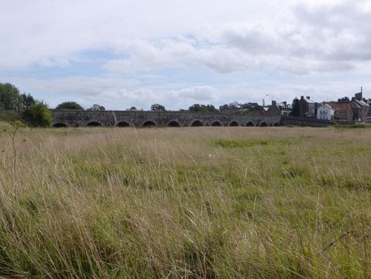 Au loin le pont de Pontaubault, 11 arches, datant du 15ème.