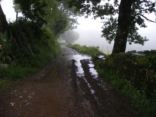Chemin faisant, mais mouillé