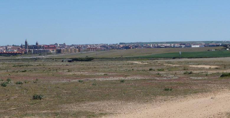 Ah Salamanca, mais de loin