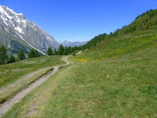 Les alpages de Leuchey - Damon