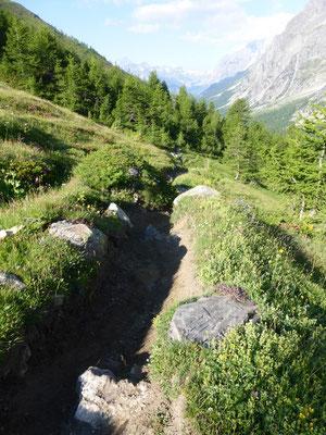 Le sentier qui descend à Arp Nouva - Désot