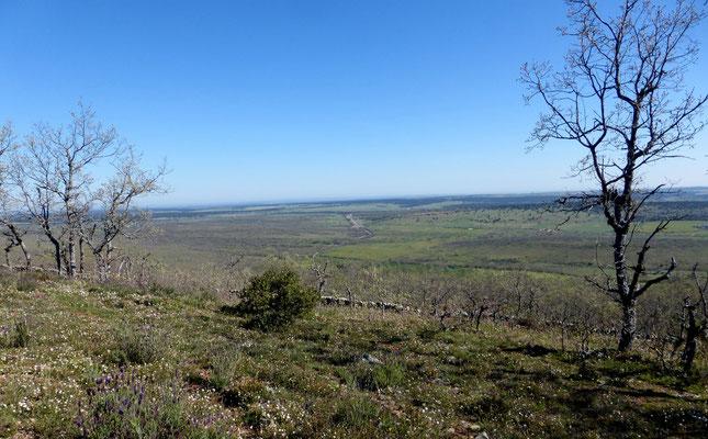 Une vue magnifique sur la vallée