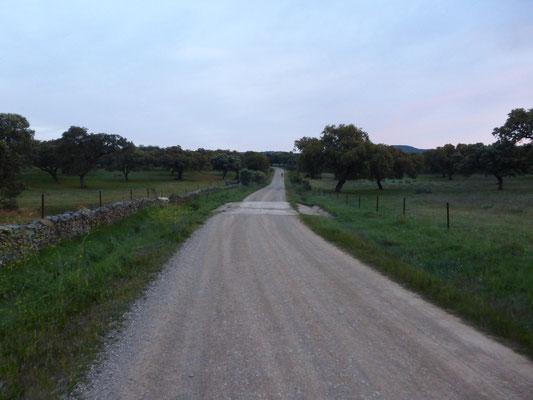 La piste sur plus de 10 km