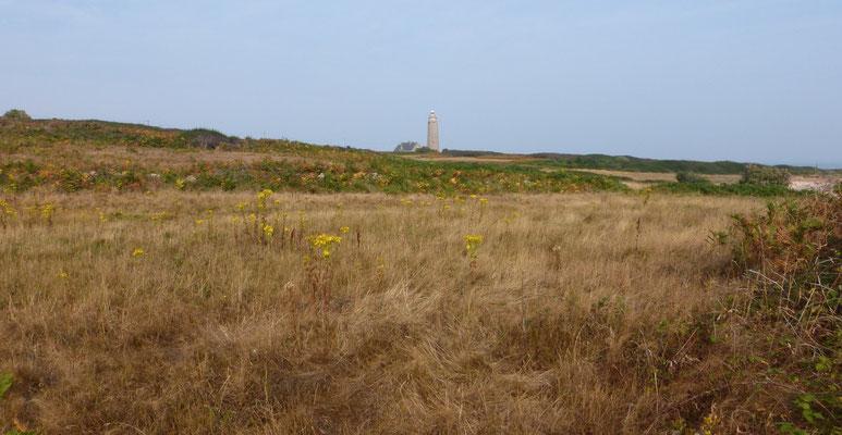 Au loin le phare du cap Levi