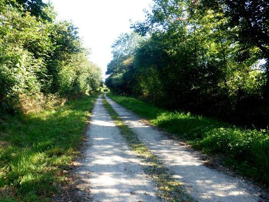 Chemin juste après Sainte Mère Eglise