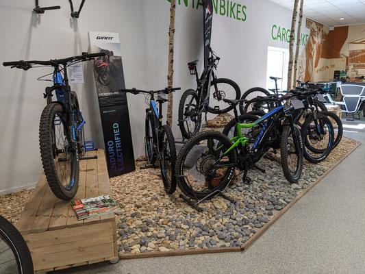 Große e-Bike und e-MTB Auswahl in der e-motion e-Bike Welt Bremen