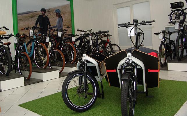 e-Bikes kaufen und probefahren in der e-motion e-Bike Welt Cloppenburg
