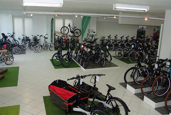 Elektrofahrräder kaufen und probefahren in der e-motion e-Bike Welt Cloppenburg