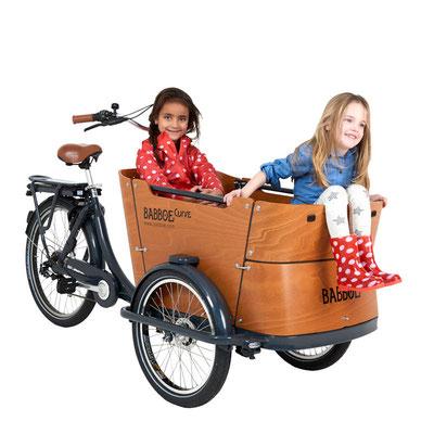 Babboe Lastenfahrrad mit Elektromotor Curve-E mit eleganter großer Transportbox für bis 4 Kinder