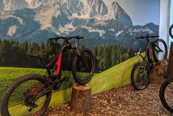 Liv e-Mountainbikes probefahren und kaufen in der e-motion e-Bike Welt Göppingen