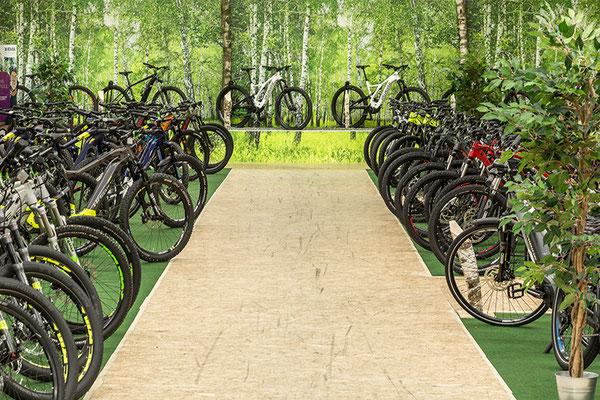 e-Bikes und Pedelecs in der e-motion e-Bike Welt in Nürnberg kaufen