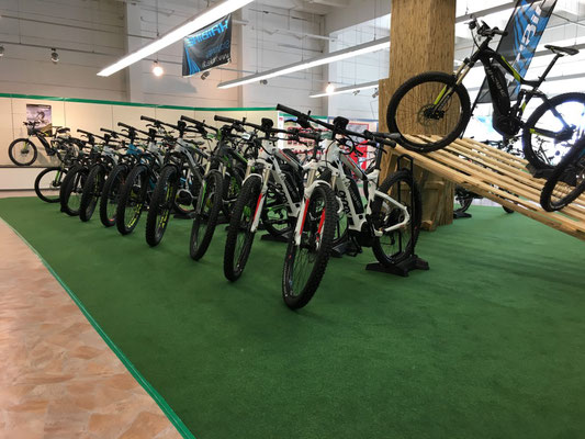 e-Bike Sortiment e-motion e-Bike Welt Nürnberg