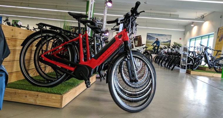 e-Bikes leasen in Gießen
