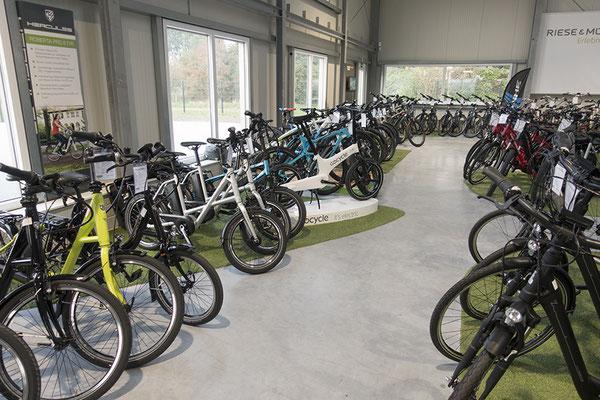 Impressionen aus unserer e-motion e-Bike Welt Bad-Zwischenahn