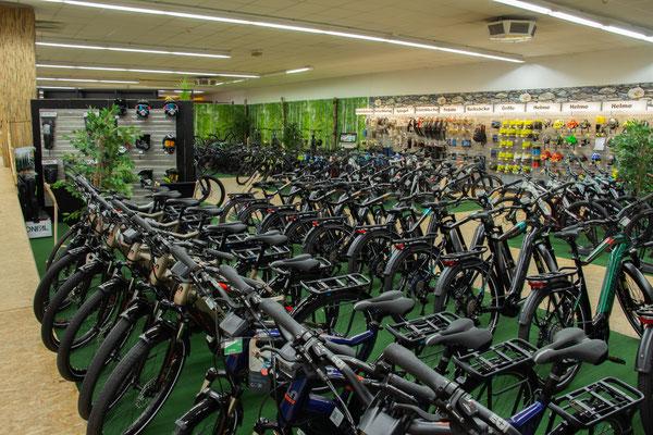 Elektrofahrräder in der e-motion e-Bike Welt in Nürnberg kaufen und Probefahren