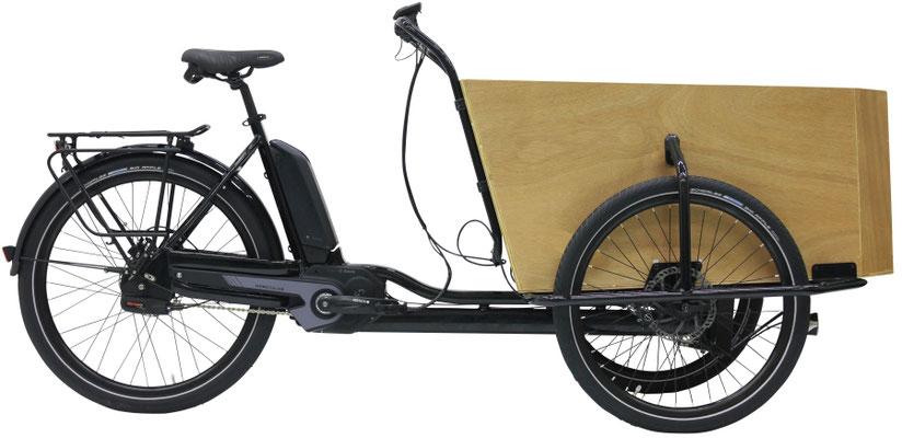 Lasten und Cargo e-Bikes in der e-motion e-Bike Welt Moers kaufen