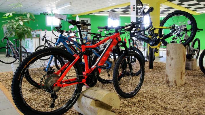 Erleben Sie große e-Bike Markenvielfalt in der e-motion e-Bike Welt Bern in der Schweiz