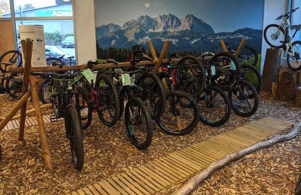 Beratung zu Liv e-MTBs vom Experten in der e-motion e-Bike Welt Göppingen