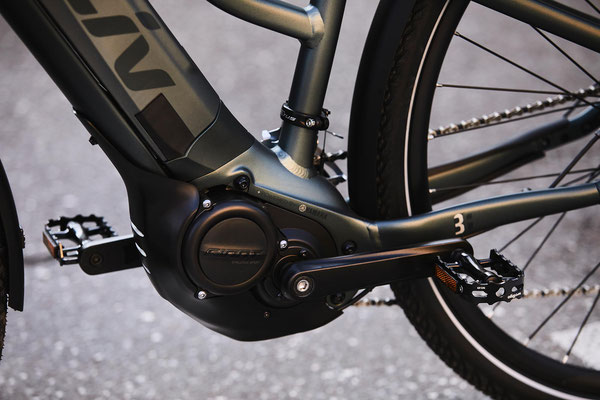 Liv Amiti E+2 e-Bikes in der e-motion e-Bike Welt in Braunschweig kaufen
